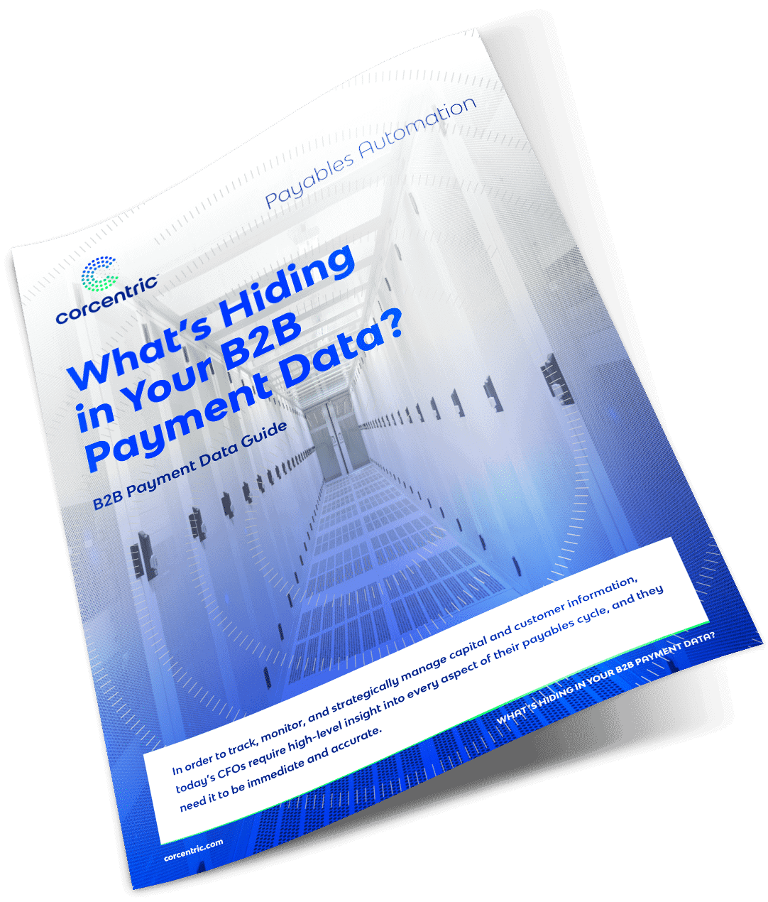 white-paper-whats-hiding-in-your-b2b-payment-data-asset